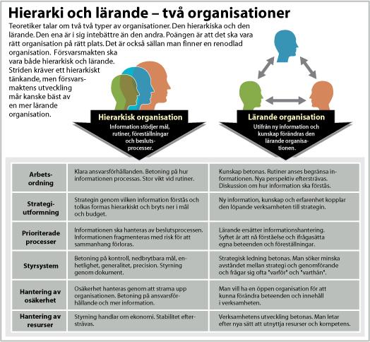 Hierarki och lärande